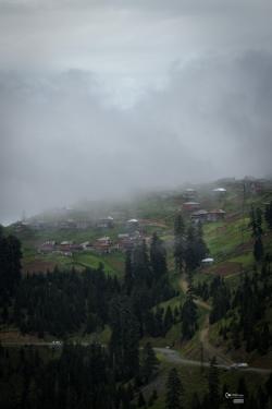 georgia_summer-161
