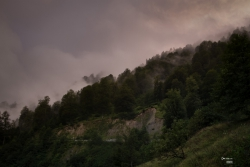 Georgia_september_2014-35