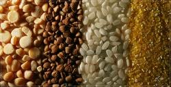 cereals3