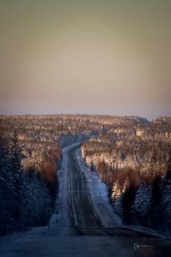 murmansk-100