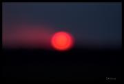 sun (2)
