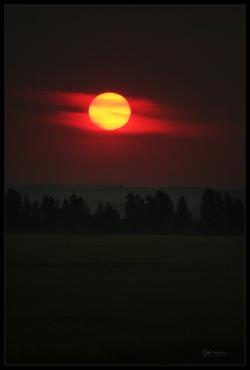 ukr_sun