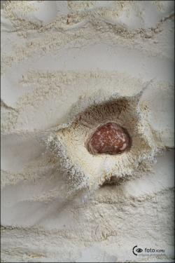 flour5